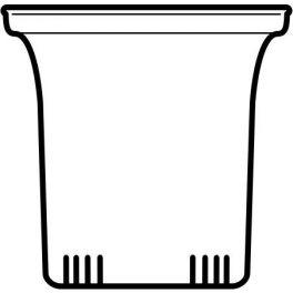 Glasfilter, klein 6 Stk