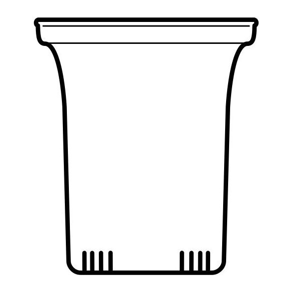 Glasfilter, gross 6 Stk